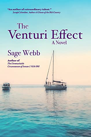 The Venturi Effect by Sage Webb